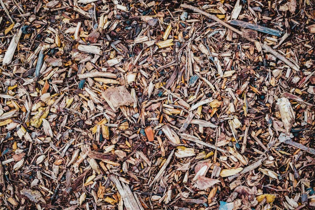 Composting Green Waste in Preston